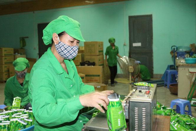 Khẳng định giá trị, thương hiệu trà Thái
