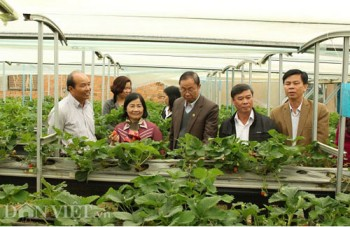 Giúp nông dân xây dựng nông thôn mới bền vững