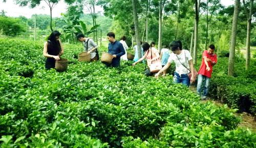 Xã dân tộc miền núi đầu tiên của Hà Nội đạt chuẩn