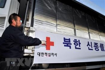 Hàn Quốc là quốc gia viện trợ nhiều nhất cho Triều Tiên trong năm 2019