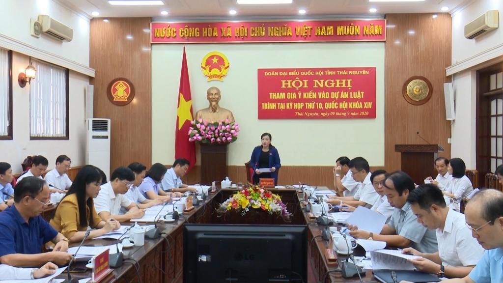 Đoàn Đại biểu Quốc hội tỉnh cho ý kiến vào dự án luật