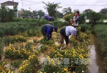Bắc Bộ nắng ấm, ngập lụt ở Trung Bộ giảm dần