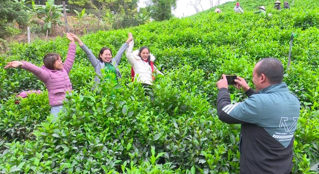 Phát triển mô hình nông nghiệp gắn với du lịch trải nghiệm sinh thái
