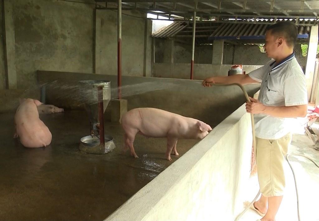 Cần sớm ban hành hướng dẫn người dân thực hiện Luật chăn nuôi