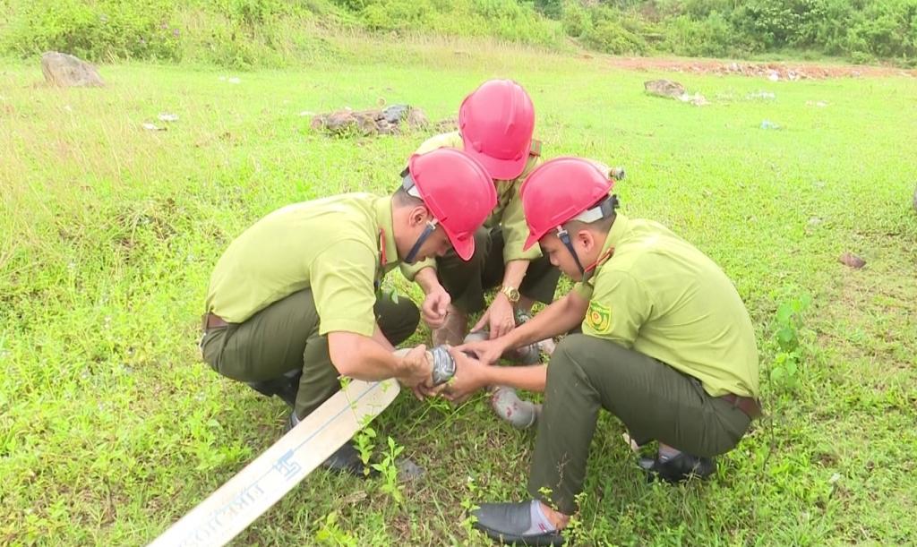 Chủ động diễn tập phòng cháy, chữa cháy rừng