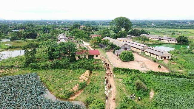 Bảo vệ nguồn gien, phát triển chăn nuôi vùng cao