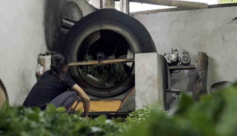 Áp dụng công nghệ khí hóa sinh khối trong sản xuất nông nghiệp