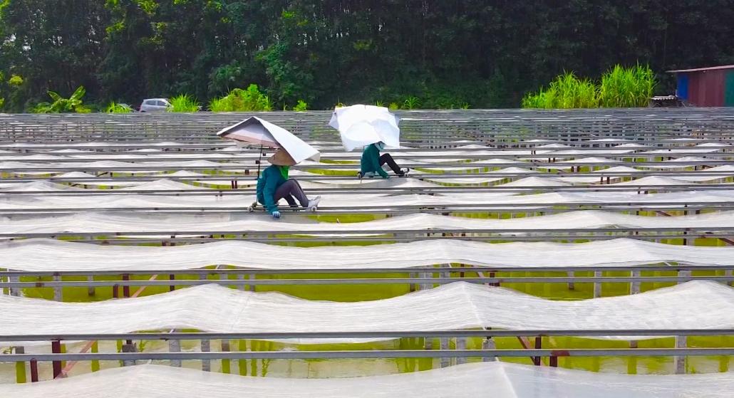 An toàn vệ sinh lao động tại làng nghề truyền thống
