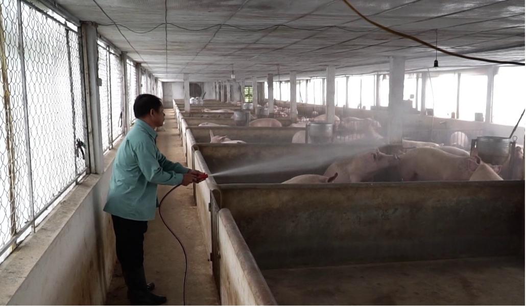 Ngành chăn nuôi Thái Nguyên chủ động thích ứng với Hiệp định EVFTA