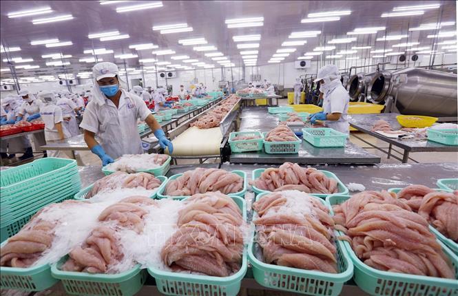 Trung Quốc tiếp tục siết chặt kiểm soát dịch COVID-19 trên thủy sản nhập khẩu
