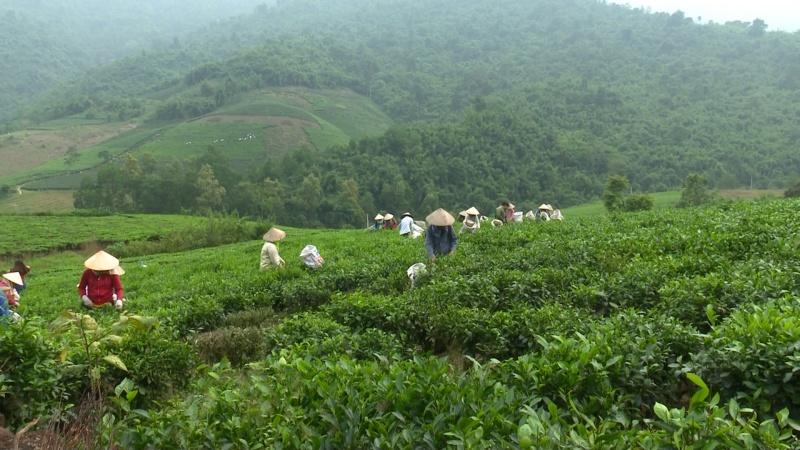 Văn hóa, du lịch trong Đề án Chương trình OCOP tỉnh Thái Nguyên