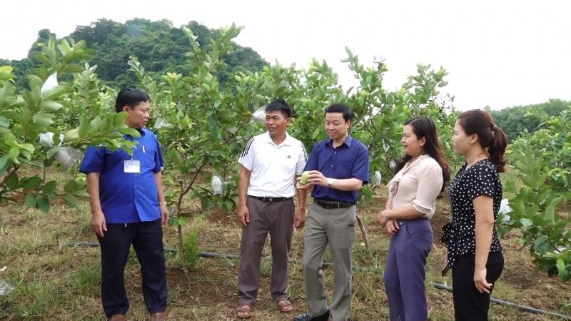 Xây dựng huyện Phú Lương phát triển nhanh, bền vững
