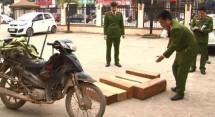 thai nguyen bat giu mot vu van chuyen go trai phep