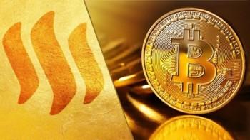gia bitcoin ngay 144 dang tang tro lai