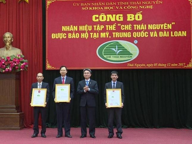 """Công bố nhãn hiệu tập thể """"Chè Thái Nguyên"""" được bảo hộ tại Mỹ, Trung Quốc và Đài Loan"""