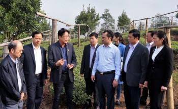 Đoàn công tác của tỉnh Thái  Nguyên làm việc với tỉnh Lai Châu về ứng dụng Khoa  học công nghệ trong nông nghiệp gắn với phát triển du lịch