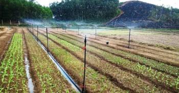 """""""Cần giải pháp cụ thể, hiệu quả để hỗ trợ đầu tư sản xuất nông nghiệp"""""""