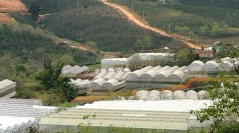 Nông nghiệp công nghệ cao ở huyện Lạc Dương, tỉnh Lâm Đồng cách làm cần được học hỏi