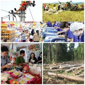 chi dao dieu hanh cua chinh phu thu tuong chinh phu noi bat tuan tu 288 19