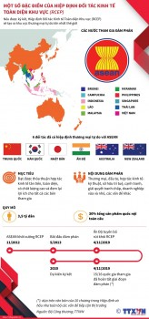 infographics dac diem hiep dinh doi tac kinh te toan dien khu vuc