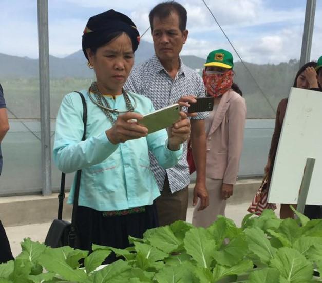 Nông sản cất cánh nhờ công nghệ
