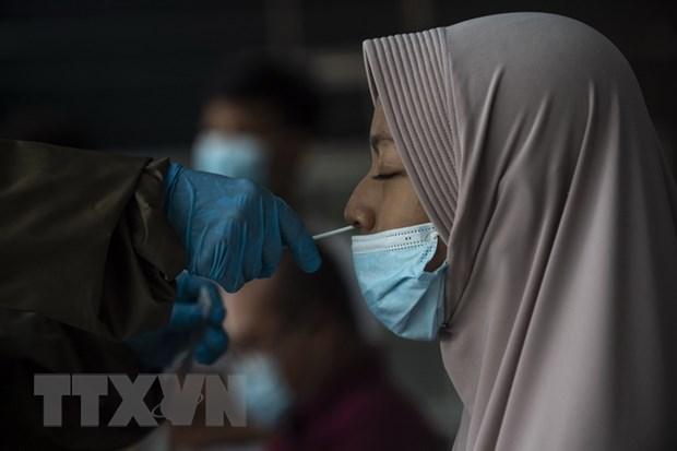 Toàn thế giới ghi nhận 167.123.463 ca nhiễm SARS-CoV-2