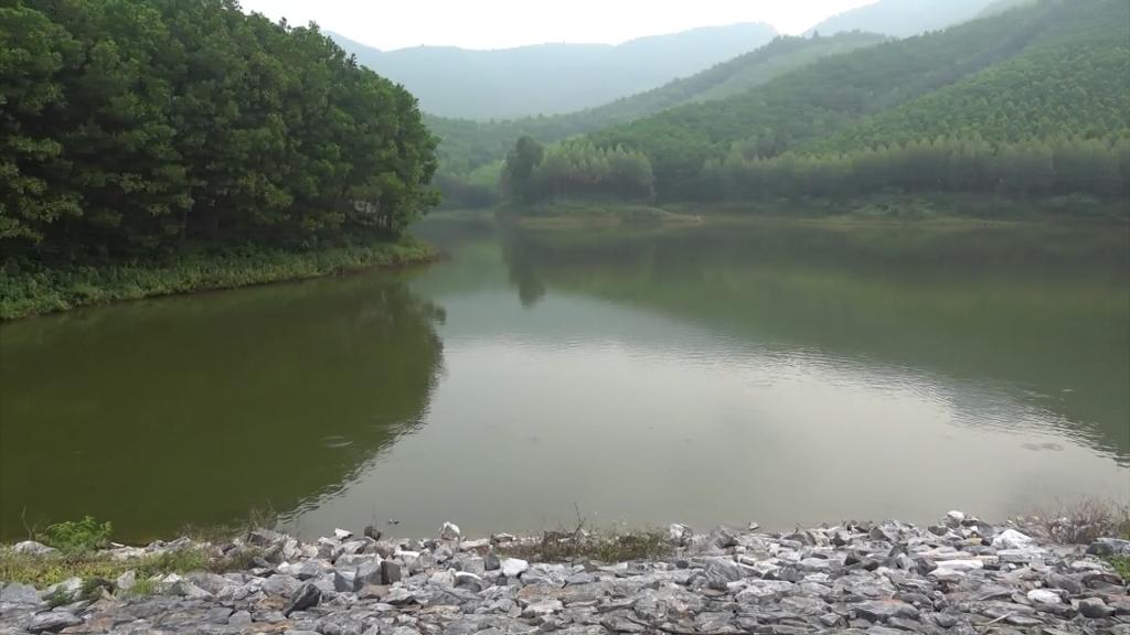 Cần tăng cường công tác quản lý, phát huy hiệu quả các công trình thủy lợi trên địa bàn huyện Phú Bình