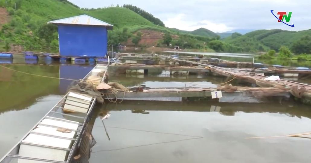 Đang xác định nguyên nhân cá lồng chết tại Hồ Ghềnh Chè