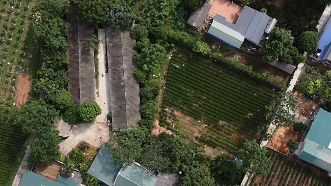 Thiếu chế tài xử lý được cơ sở chăn nuôi gây ô nhiễm ở xã Tân Cương