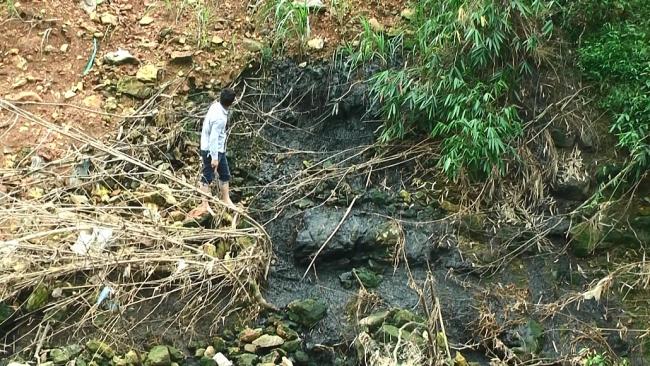 Vấn đề ô nhiễm môi trường trại chăn nuôi ở thị trấn Quân Chu