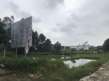 """Quảng Ngãi: Dự án trường đại học """"treo"""", 26.000 m2 đất thành... bãi sình lầy"""