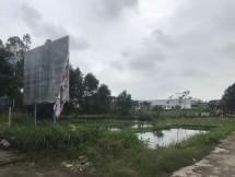 quang ngai du an truong dai hoc treo 26000 m2 dat thanh bai sinh lay