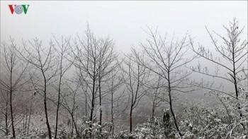 Thời tiết hôm nay: Hà Nội 8-10 độ, miền Bắc rét đậm, rét hại.