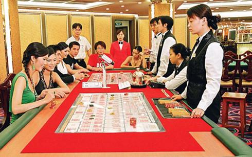 kinh doanh casino hoi hop cho huong dan