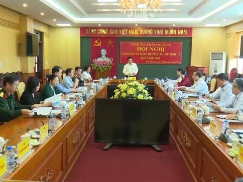 thai nguyen hoi nghi giao ban cac dang bo truc thuoc quy i2018