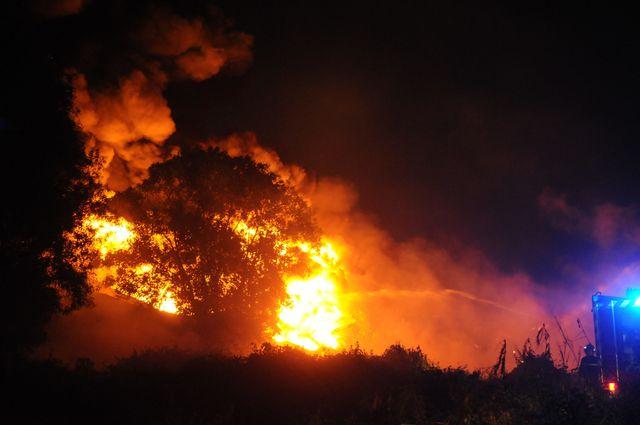 Kho dầu nhớt ở ngoại thành TPHCM cháy lớn suốt đêm