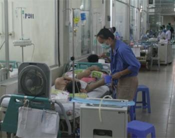 Căn bệnh muỗi truyền trong mùa hè đã khiến 8 người tử vong