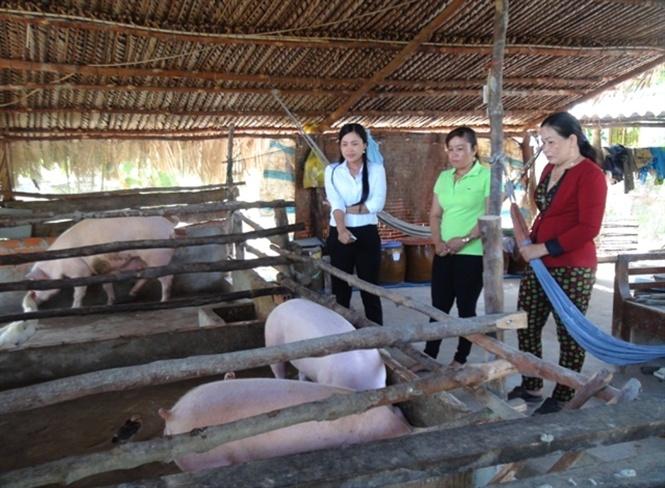 Phụ nữ Phú Tân chung tay xây dựng nông thôn mới