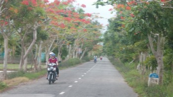 chinh quyen bac lieu cung nguoi dan lam ntm