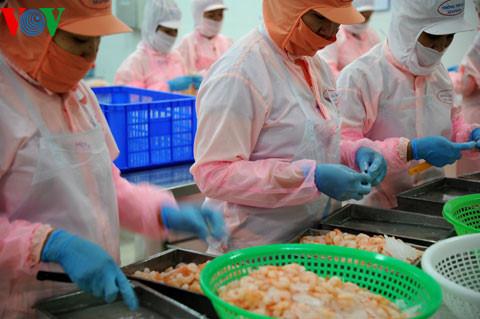 """Thủy sản Việt Nam: Làm gì để không bị """"thẻ đỏ""""?"""