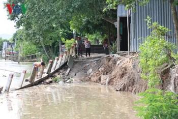 Sạt lở nghiêm trọng ở An Giang, 140m đường sụt xuống sông