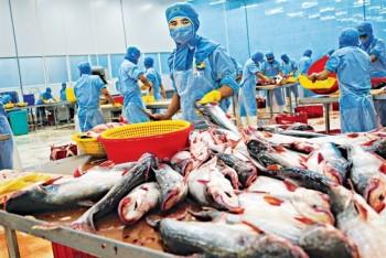 Thủy sản gặp khó tại thị trường trong nước