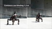 robot 4 chan ho tro cuu nguoi trong tham hoa