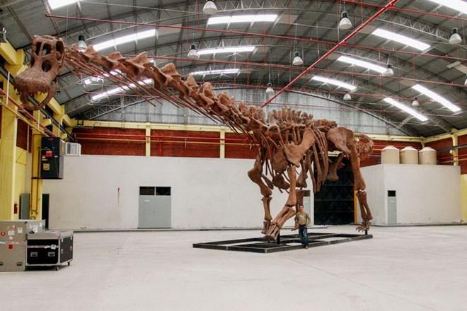Phát hiện loài khủng long khổng lồ, lớn gấp 12 lần con voi châu Phi