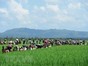 Myanmar: Khủng bố tại bang Rakhine vẫn là mối đe dọa tại khu vực