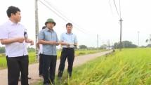lanh dao tinh kiem tra cong tac ung pho voi bao mangkhut