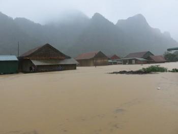 Quảng Bình đề nghị Chính phủ cứu đói 5.000 tấn gạo, 250 tỷ đồng