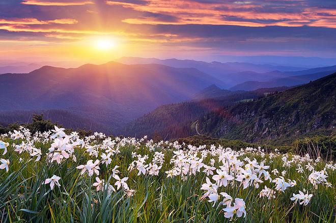 dung hinh truoc nhung thung lung hoa quyen ru nhat hanh tinh