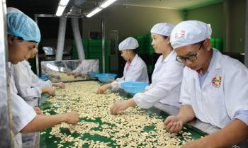 Việt Nam xây dựng vùng nguyên liệu điều 1 triệu tấn ở Campuchia