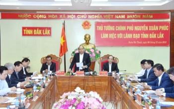 Thủ tướng lưu ý Đắk Lắk về phát triển rừng và công nghiệp chế biến gỗ